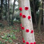 Knitted Poppies decorating a nearby tree